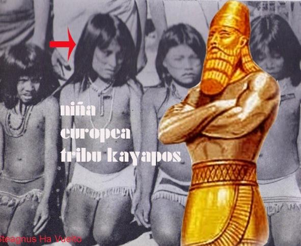 europeakayapos