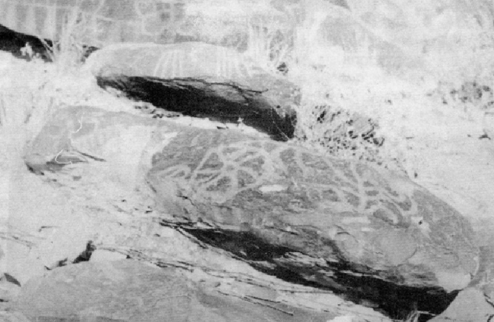petroglifoscohaila