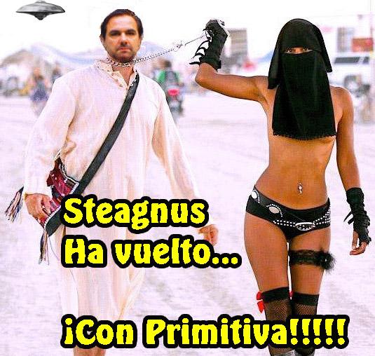 steagnuscollar